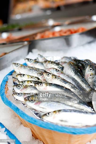 at the market: fish