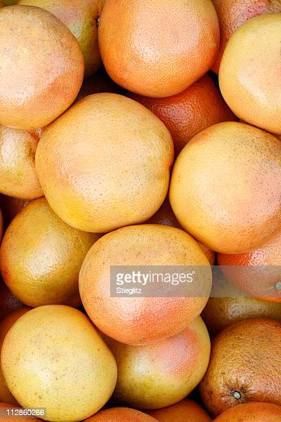 at the market: grapefruit