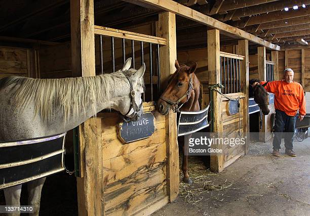 At the Plymouth County House of Correction inmates care for retired thoroughbred horses from Suffolk Downs racetrack Inmate John Jancaitis from Hull...