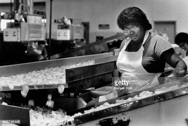 At the Red Seal Potato Chip factory the chips are rolling of the line to fill the 75th anniversary cans that are being put on the shelves Credit The...
