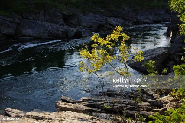 At the Tarraätno river canyon
