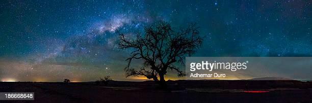 Atacama desert night sky