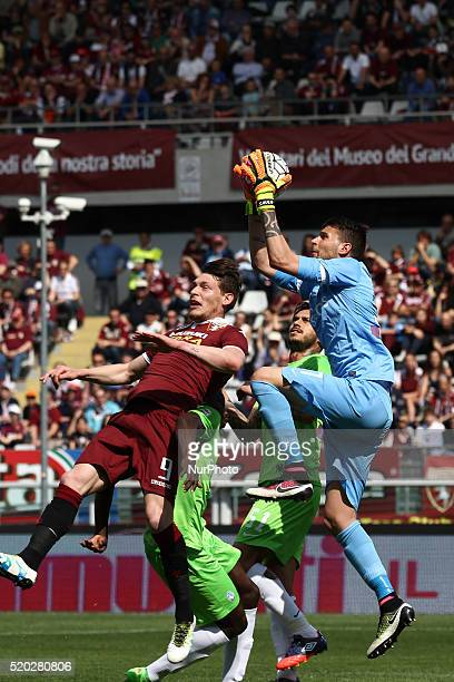 Atalanta goalkeeper Marco Sportiello in action during the Serie A football match n32 TORINO CARPI on 10/04/16 at the Stadio Olimpico in Turin Italy