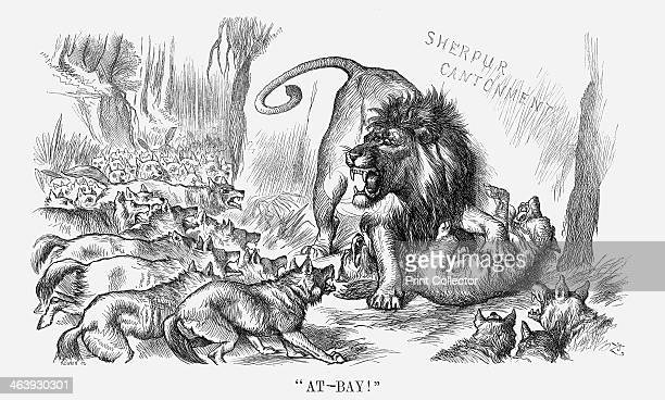 AtBay 1880 The British Lion holds a pack of wild dogs at bay This cartoon relates to an attack in late December 1879 that was made upon the British...