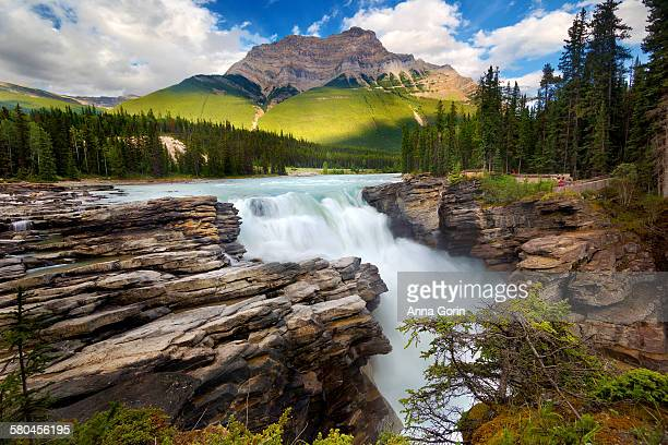 Athabasca falls in summer, off Icefields parkway