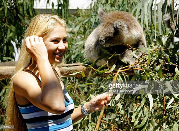 Athlete Anna Kournikova of Russia takes a break from the Australian Open Tennis tournament to play with a koala bear at the Melbourne Zoo January 18...
