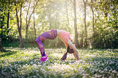 sport girl stretching in bridge exercise on a field of flowers - sunny day in a park/forest