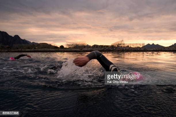 Athletes on the swimleg at The Arctic Triple // Lofoten Triathlon Extreme distance on August 19 2017 in Svolvar Norway Lofoten Triathlon is one of...