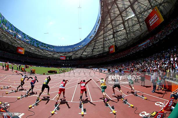 Athletes sprint from the blocks in the Men's 110 metres hurdles heats during day five of the 15th IAAF World Athletics Championships Beijing 2015 at...