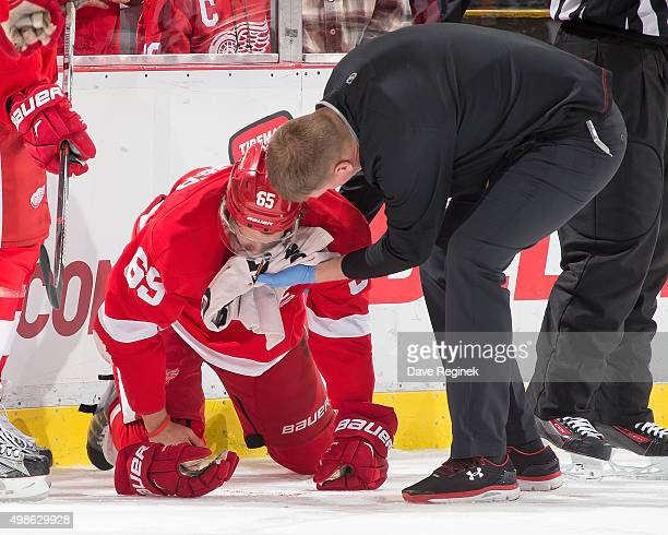 Athletic Trainer Piet Van Zant of the Detroit Red Wings runs out to help Danny DeKeyser of the Wings after taking a muck in the mouth during an NHL...
