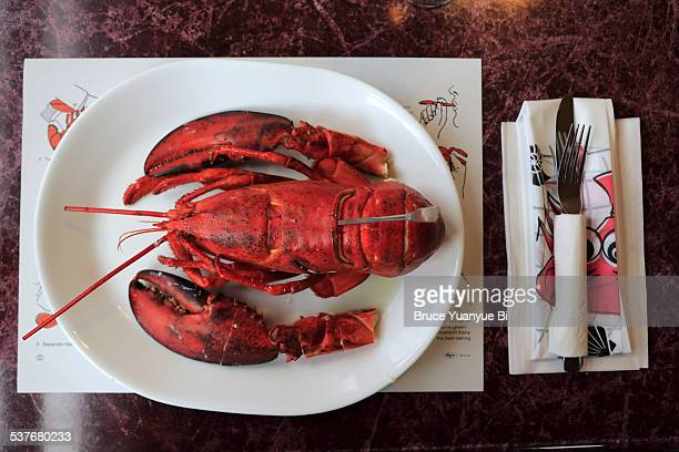 Atlantic lobster served in restaurant