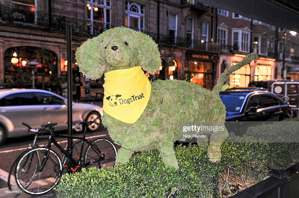 Atmosphere at the launch of George's Dinner for Dogs menu on March 19, 2013 in London, England.