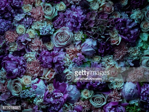 Atmospheric floral arrangement, full frame