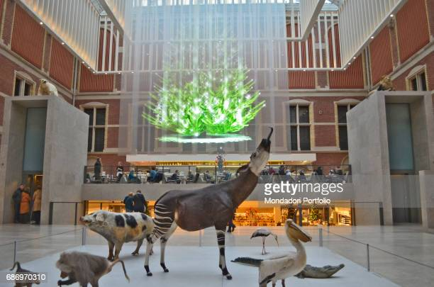 Atrium and cafŠ of the Rijksmuseum set up for Christmas with some items from the Natural History Museum on a temporary exhibition Amsterdam 7th...