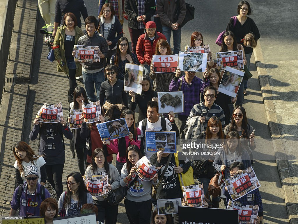 Attendees carry pictures of abused animals as they attend a pro-animal rights rally in Hong Kong on January 13, 2013. The rally, organised on social media site Facebook, attracted around 1000 supporters who rallied for the police to take stronger action against the abuse of animals and to protect the rights of animals. AFP PHOTO / Antony DICKSON
