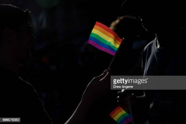 Attendees hold rainbow flags during a Flag Day 'Raise the Rainbow' march and rally June 14 2017 in New York City The event honored LGBT rainbow flag...
