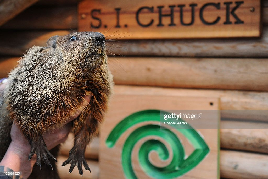 CHUCK attends the 2012 Groundhog's Day celebration at the Staten Island Zoo on February 2, 2012 in Staten Island borough of New York City.