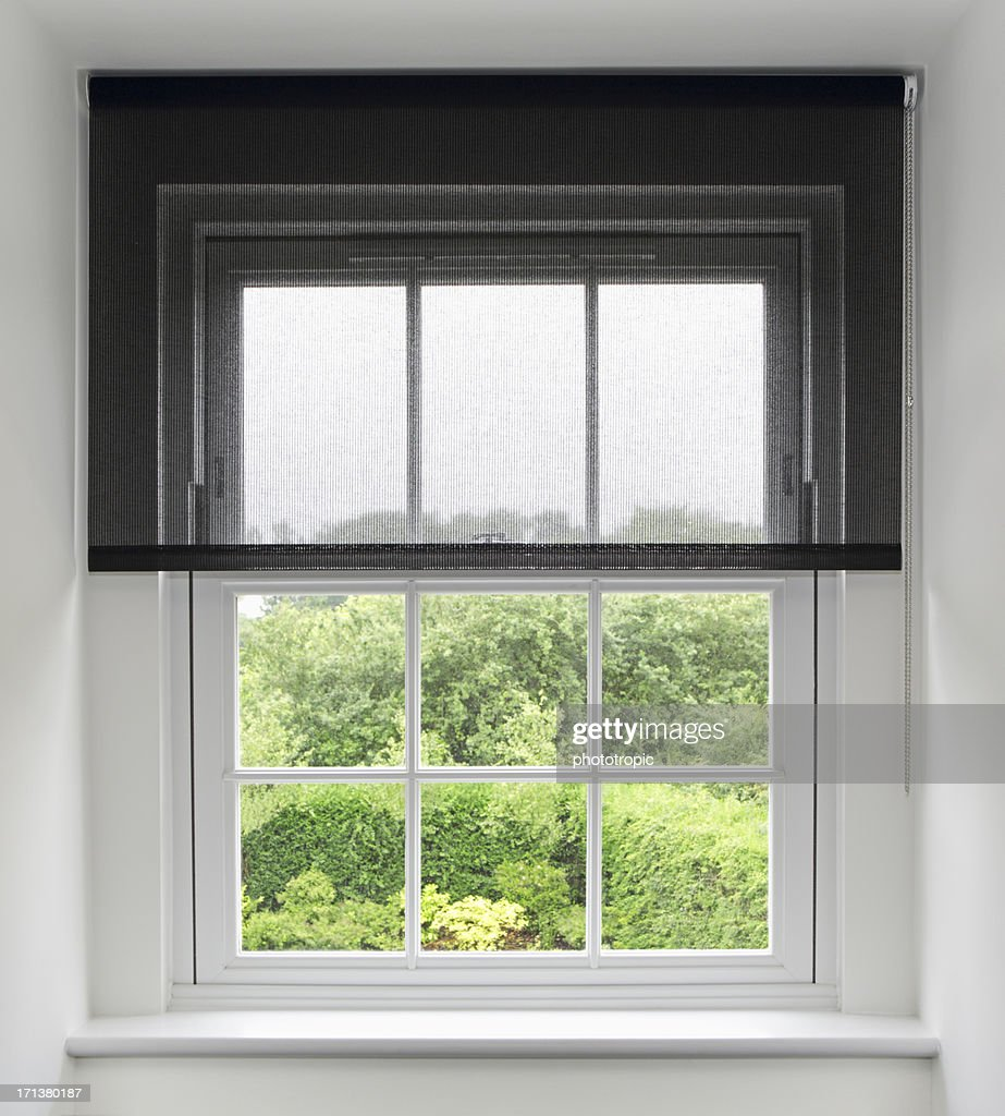 attic window and blinds