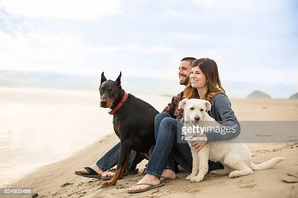 Beau couple sur la plage avec leur chien