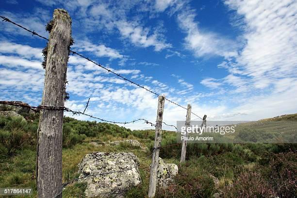 Aubrac Plateau in France