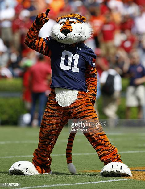 Auburn Tigers mascot Aubie cheers on the field before the game between the Auburn Tigers and the Arkansas Razorbacks at Jordan Hare Stadium on August...
