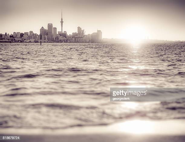 Auckland skyline at sunset - monochrome