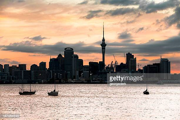 Auckland Sunset Silhouette