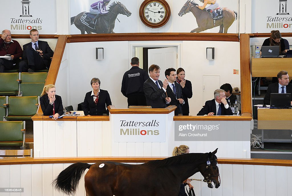 Auctioneer at Tattersalls yearling sales on October 08, 2013 in Newmarket, England.