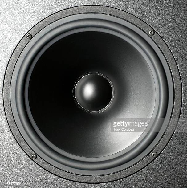 Audio speaker cone