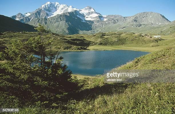 Auf dem Simplonpass in den Walliser Alpen Blick über einen kleinen Bergsee und grüne Almwiesen zum Fletschhorn Undatiertes Foto