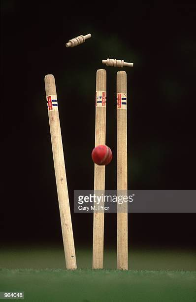 A Model Release showing Wickets falling held at the Reigate Priory Cricket Club in Reigate England Mandatory Credit Gary M Prior/Allsport