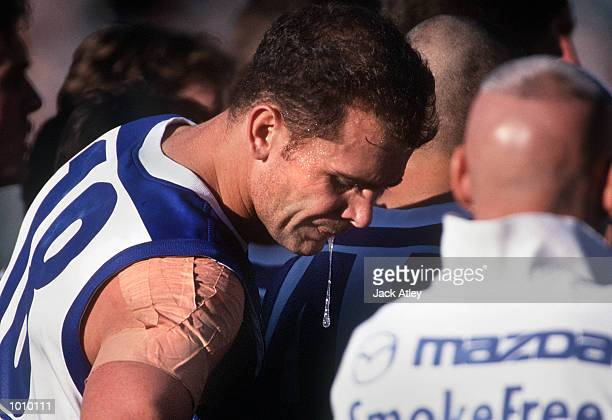 Wayne Carey for the Kangaroos spits during the three quater time break in the round twenty one Australian Football League match between Collingwood...