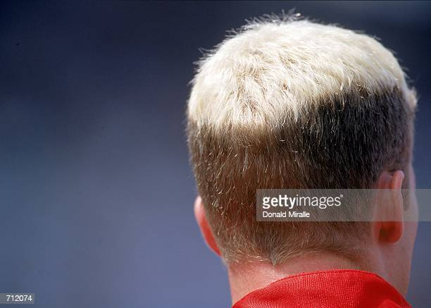 Dale Earnhardt Jr #8 who drives the Chevrolet Monter Carlos for Dale Earnhsrdt Inc looks on showing his colored hair during the Brickyard 400 Part of...