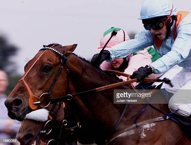 Tony Hamilton brings American Cousin home to land The Axminstert Apprentice Series Handicap Stakes run over 5 Furlongs at Salisbury Mandatory Credit...