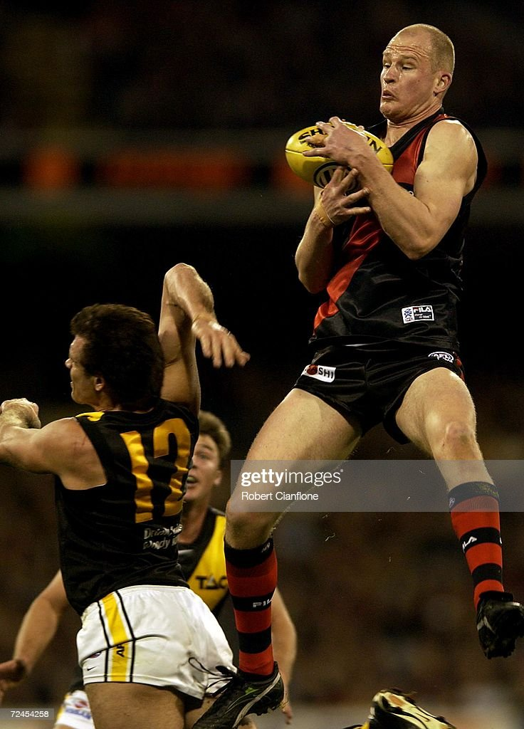 Sean Wellman of Essendon takes a strong mark over Matthew Richardson of Richmond during the AFL round 22 game between the Richmond Tigers and the...
