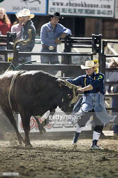 PRCA Pro bull Snuggly runs wild through the arena during the Extreme Bulls competition at the Kitsap County Stampede in Bremerton Washington