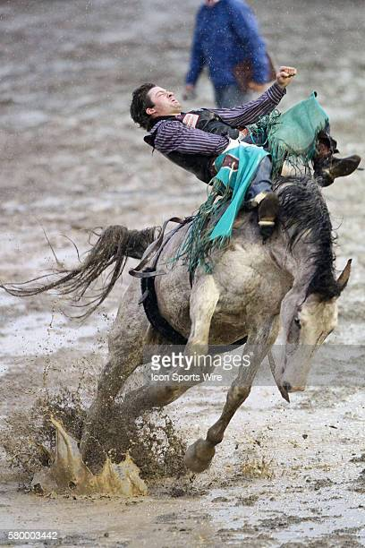 Wyatt Denny from Minden Nevada scored a 71 while battling rain and heavy wind conditions in the Bareback Riding competition on the horse Capone at...