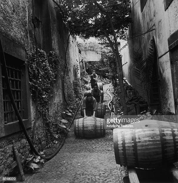 Barrels are rolled out from storage at a winery in Madeira