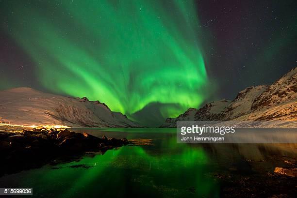 aurora borealis night in Ersfjordbotn