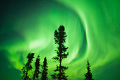 Aurora Borealis or Northern Lights, CANADA