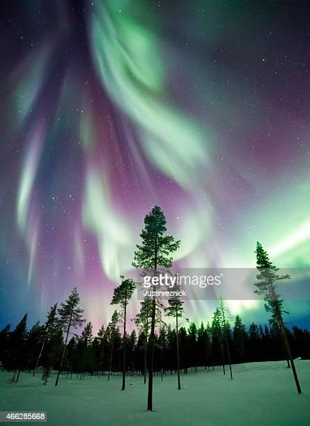 Aurora boreal