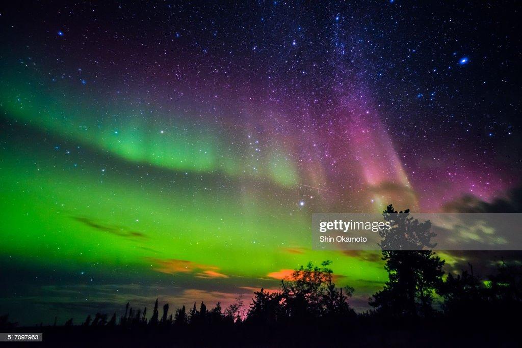 Aurora borealis : Stock Photo