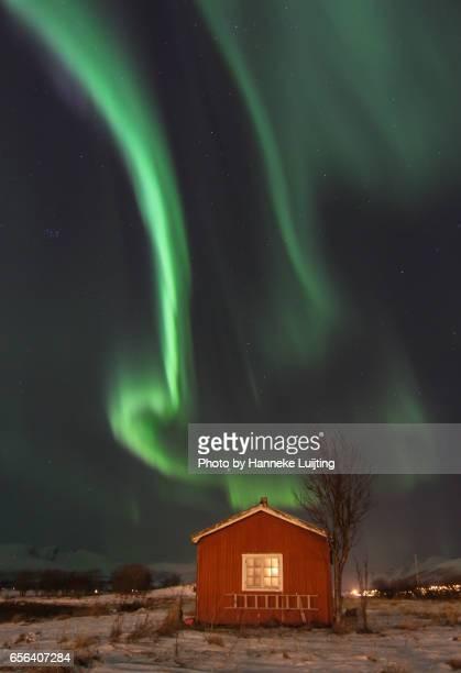 Aurora & Cabin