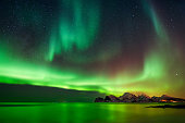 Aurora Borealis at Flaget coastline, Lofoten