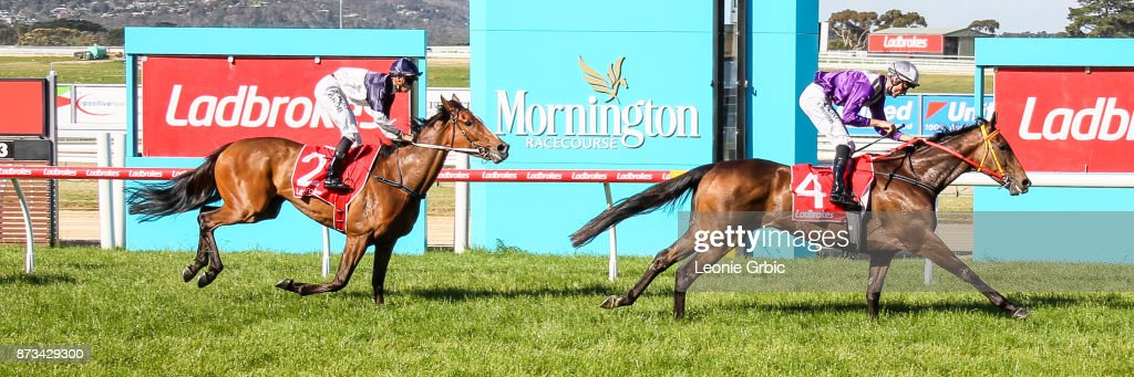 Aurora Miss ridden by Clayton Douglas wins the Mornington Car & Tyre Services Handicap at Mornington Racecourse on November 13, 2017 in Mornington, Australia.