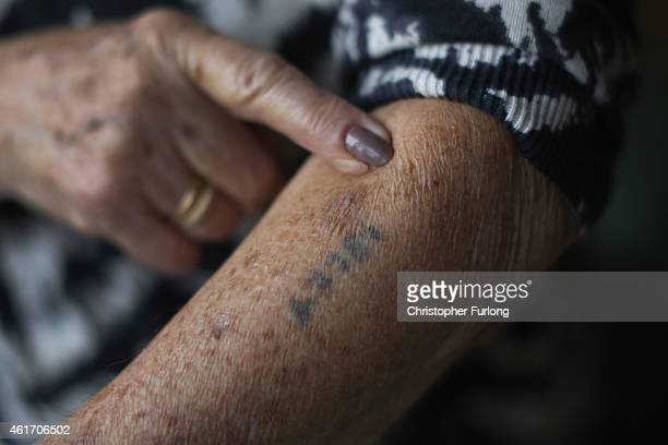 Auschwitz and Belsen concentration camp survivor Eva Behar shows her number tattoo in her home on December 1 2014 in London United Kingdom As the...