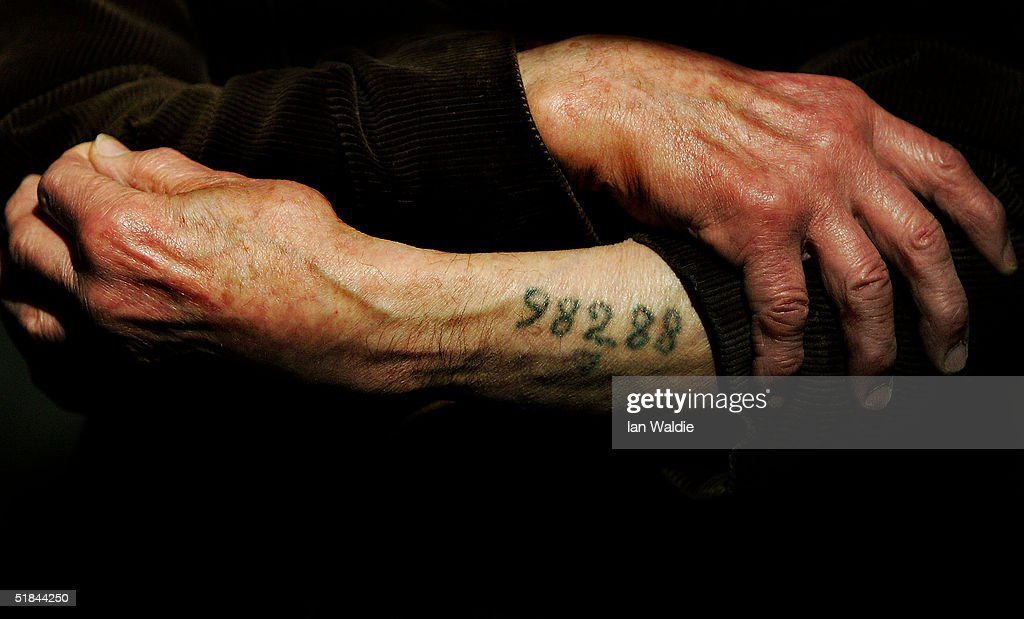 Auschwitz survivor Mr. Leon Greenman, prison number 98288, displays his number tattoo on December 9, 2004 at the Jewish Museum in London, England. Mr. Greenman O.B.E age 93 and a British citizen, spent three years of his life in six different concentration camps during World War II and since 1946 he has tirelessly recounted his life through his personal exhibition at the museum where he conducts educational events to all age groups. January 2005 will be the 60th anniversary of the liberation of the extermination and concentration camps, when survivors and victims who suffered as a result of the Holocaust will commemorated across the world.