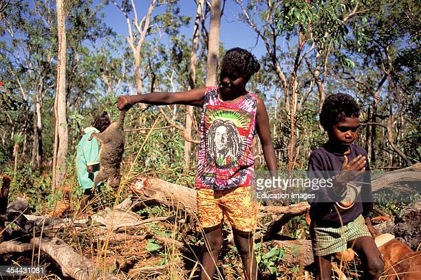 Australia Northern Territory Bathurt Island One Of Two Tiwi Aboriginal Islands Possum Caught For Dinner By Tiwis