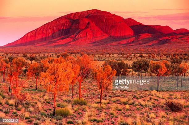 Australia, Northern Territory,Ayers Rock (Uluru)