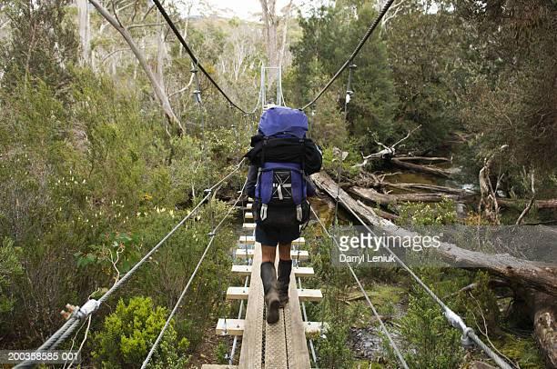 Australia, Tasmania, man walking on suspended wooden foot bridge